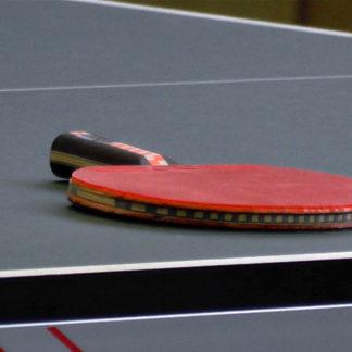 Tischtennis-Schläger ruhend